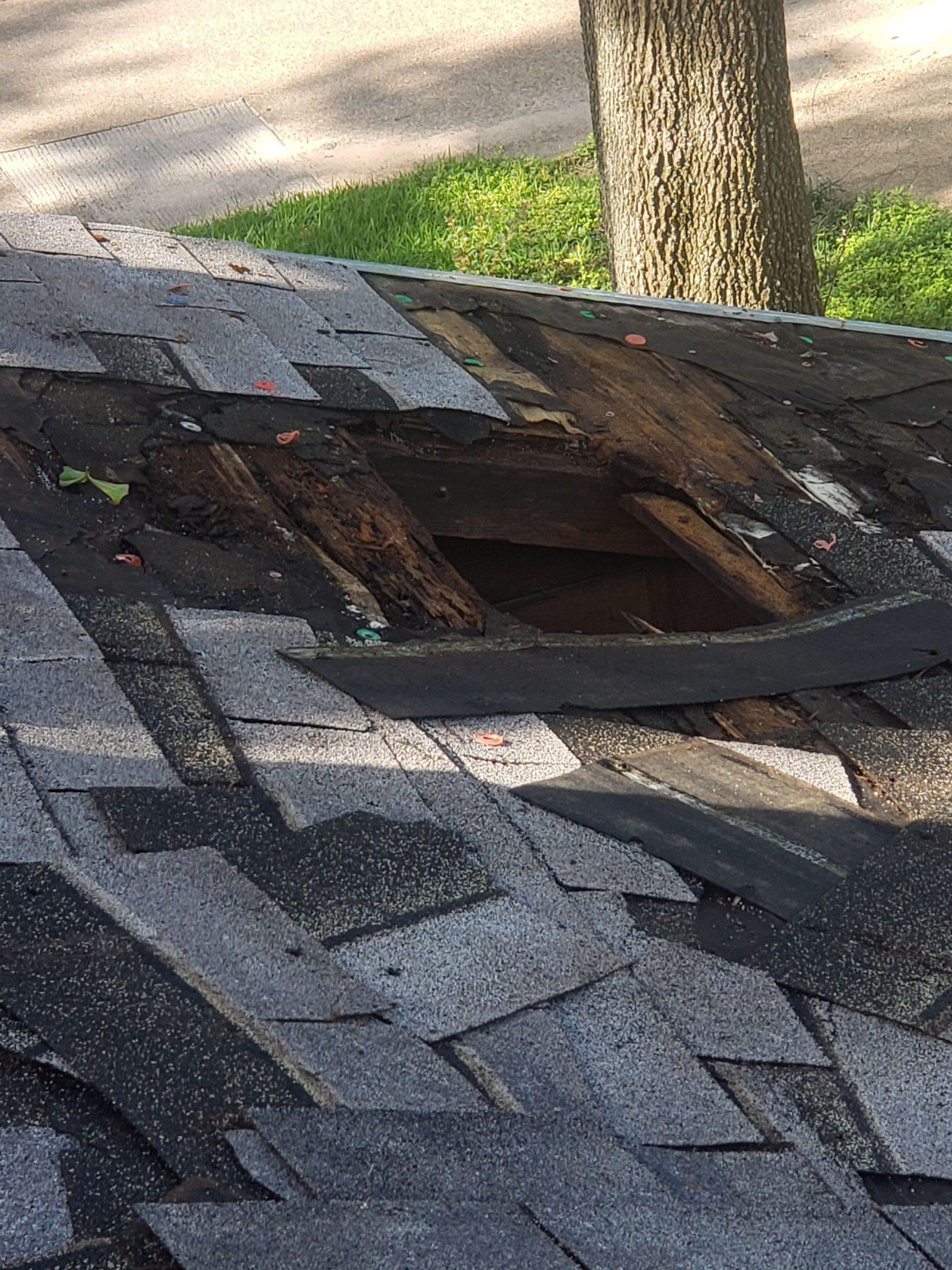 location storm damage repair